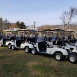 Golf Cart Auction