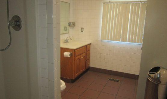 Home bathroom auction