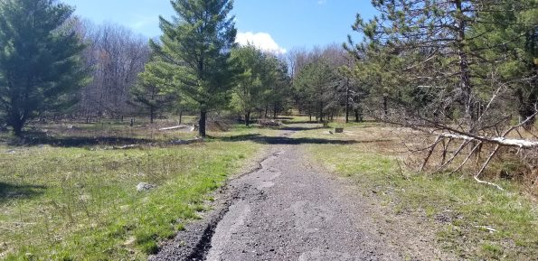87.6 +/- Acres, Roaring Brook Twp